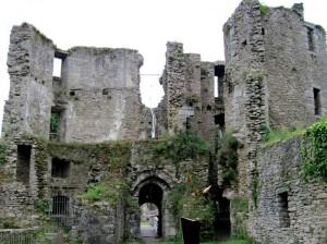 chateau (30)