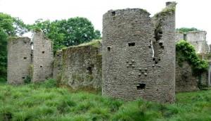 chateau (17)