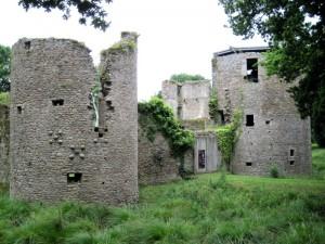 chateau (18)