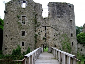 chateau (24)