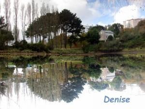 Denise - Copie