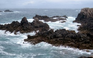 Ouessant (12)