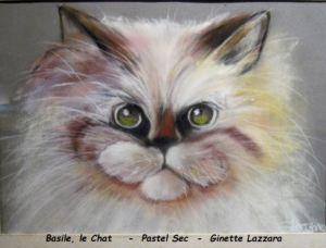 portrait (12)