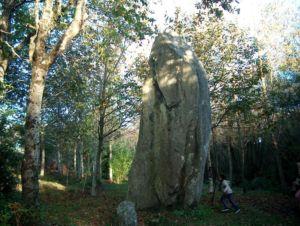 Pouldreuzic nov.2006 (14)