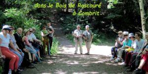 Roscoure-1